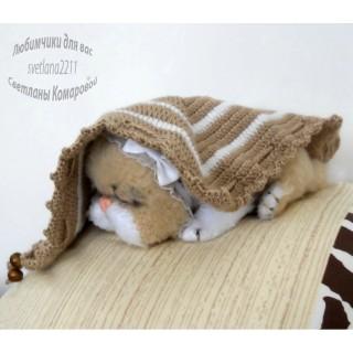 Мурочка спящий котёнок