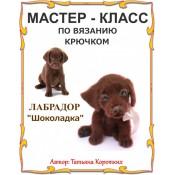 Лабрадор Шоколадка