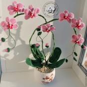 МК Орхидея