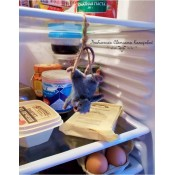 Мышь не повесилась