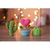 Сердечные кактусы